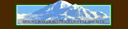 Mount Baker Dental Association